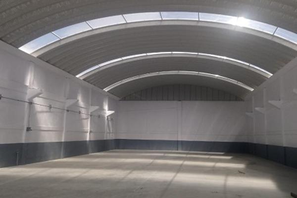 Foto de nave industrial en renta en emiliano zapata 29, la constitución totoltepec, toluca, méxico, 7256540 No. 06