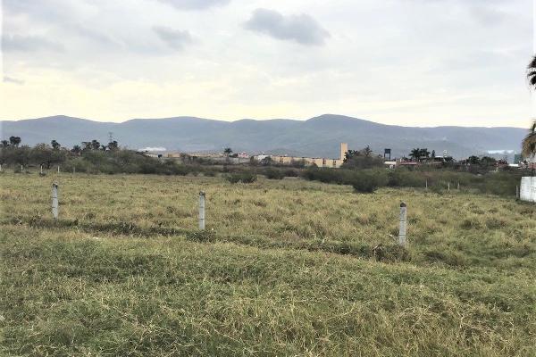 Foto de terreno habitacional en renta en  , emiliano zapata, cuernavaca, morelos, 12218009 No. 02