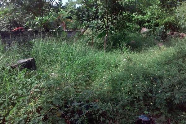 Foto de terreno habitacional en venta en  , emilio carranza, ciudad madero, tamaulipas, 2642714 No. 04