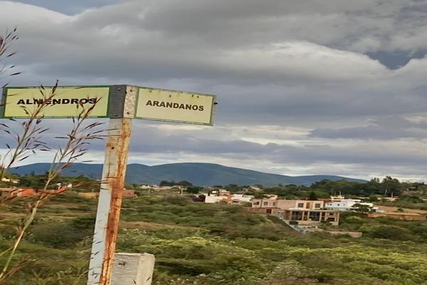 Foto de terreno habitacional en venta en entre calle almendros y arandanos , san andres huayapam, san andrés huayápam, oaxaca, 19236893 No. 05