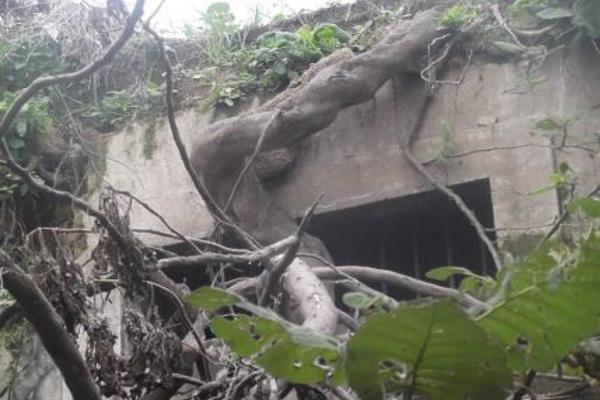Foto de terreno habitacional en venta en epigmenio gonzález , mexicaltzingo, guadalajara, jalisco, 14031613 No. 14
