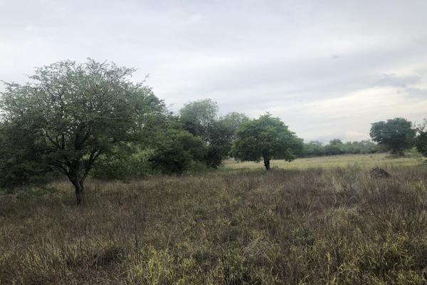 Foto de terreno habitacional en venta en escobedo 000, higueras, higueras, nuevo león, 15322997 No. 05