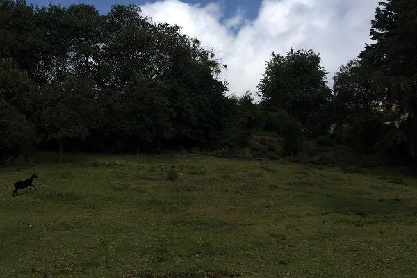 Foto de terreno habitacional en venta en espiritu santo , espíritu santo, jilotzingo, méxico, 5422692 No. 05