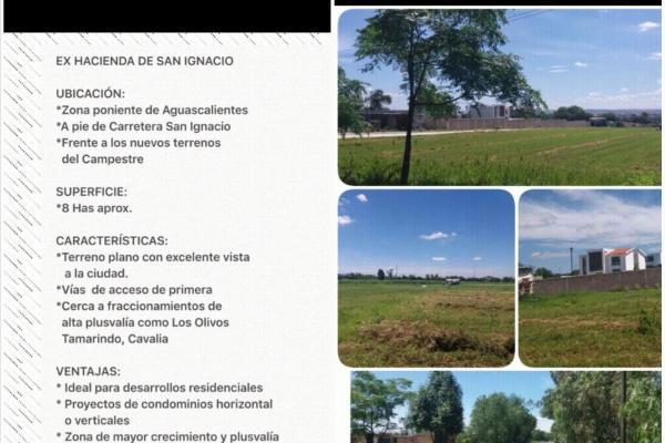 Foto de terreno habitacional en venta en  , ex hacienda san ignacio, aguascalientes, aguascalientes, 15233616 No. 03