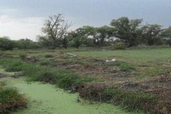 Foto de terreno habitacional en venta en  , ex-hacienda san mateo, cuautitlán, méxico, 12828706 No. 02