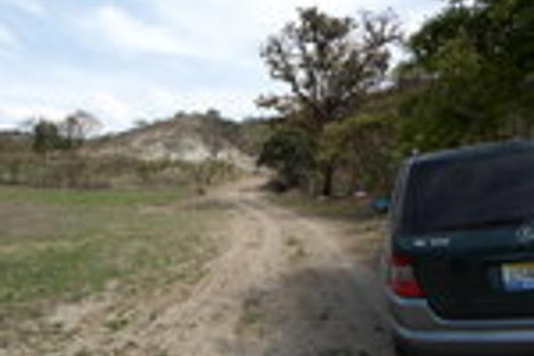 Foto de terreno habitacional en venta en faldas del bosque , bosques de santa anita, tlajomulco de zúñiga, jalisco, 3033050 No. 05