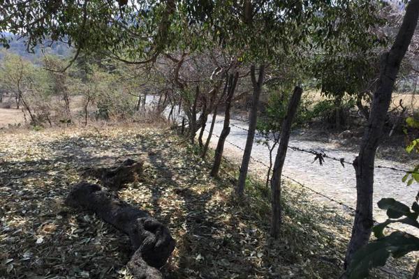 Foto de terreno habitacional en venta en felipe angeles , ahuisculco, tala, jalisco, 7509380 No. 02