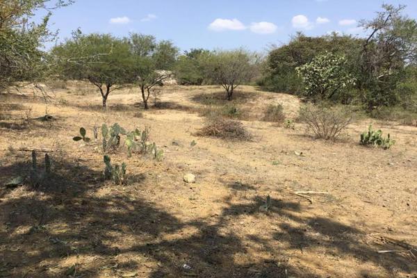 Foto de terreno habitacional en venta en felipe angeles , ahuisculco, tala, jalisco, 7509380 No. 03