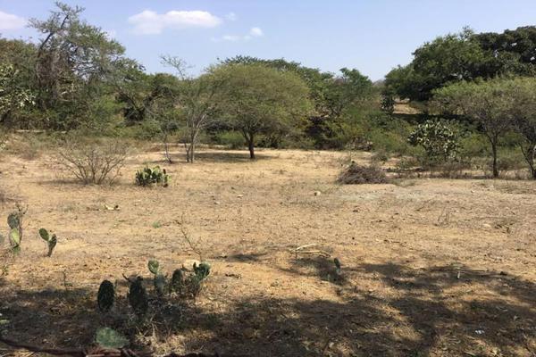 Foto de terreno habitacional en venta en felipe angeles , ahuisculco, tala, jalisco, 7509380 No. 04
