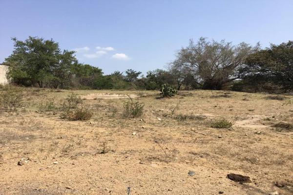 Foto de terreno habitacional en venta en felipe angeles , ahuisculco, tala, jalisco, 7509380 No. 06