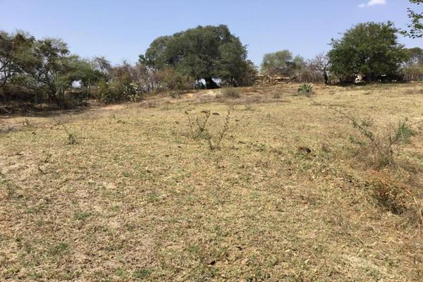 Foto de terreno habitacional en venta en felipe angeles , ahuisculco, tala, jalisco, 7509380 No. 07