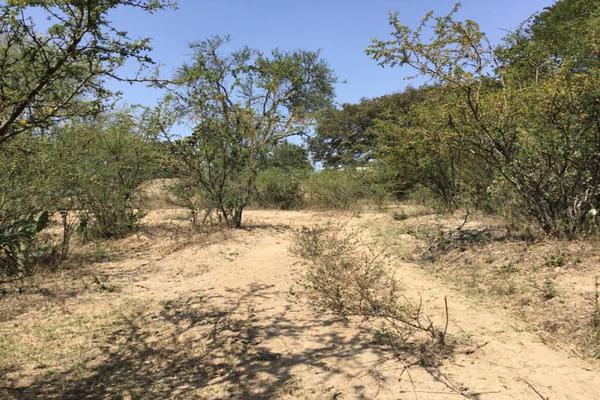 Foto de terreno habitacional en venta en felipe angeles , ahuisculco, tala, jalisco, 7509380 No. 09