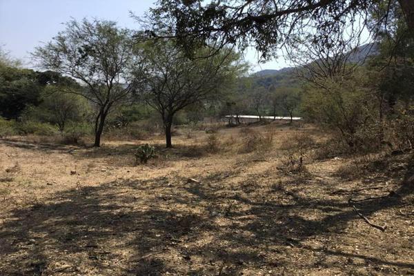 Foto de terreno habitacional en venta en felipe angeles , ahuisculco, tala, jalisco, 7509380 No. 12