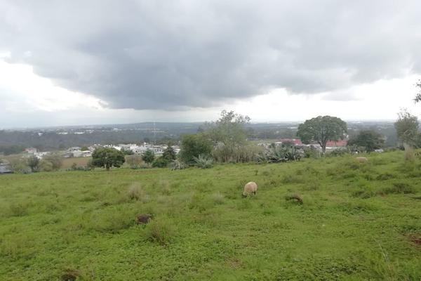 Foto de terreno habitacional en venta en  , ferrería de apulco, metepec, hidalgo, 7659593 No. 06