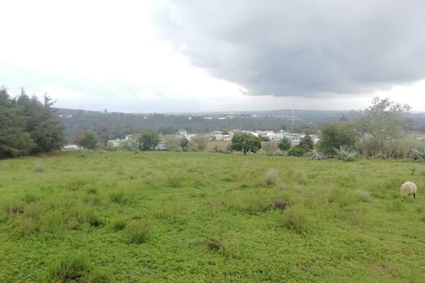 Foto de terreno habitacional en venta en  , ferrería de apulco, metepec, hidalgo, 7659593 No. 08