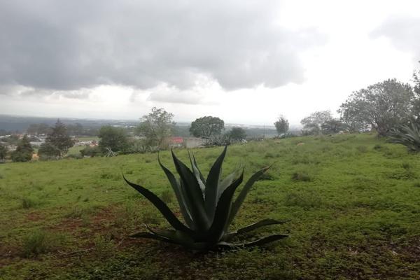 Foto de terreno habitacional en venta en  , ferrería de apulco, metepec, hidalgo, 7659593 No. 09