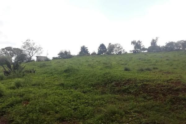 Foto de terreno habitacional en venta en  , ferrería de apulco, metepec, hidalgo, 7659593 No. 13
