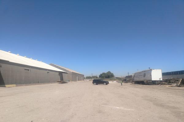 Foto de bodega en renta en  , ferrocarril, mexicali, baja california, 7516957 No. 03