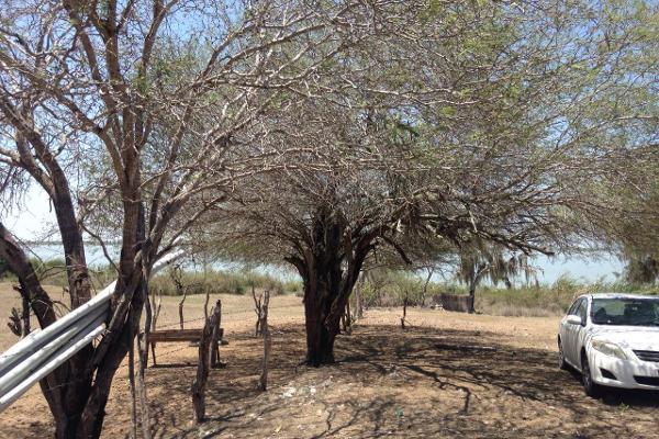 Foto de terreno habitacional en venta en finca #31989 0, esteros, altamira, tamaulipas, 2648586 No. 01