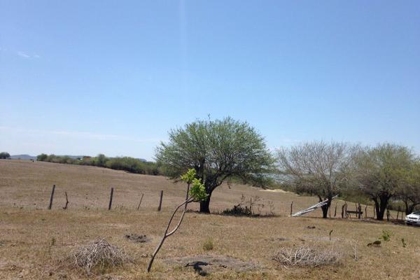 Foto de terreno habitacional en venta en finca #31989 0, esteros, altamira, tamaulipas, 2648586 No. 02