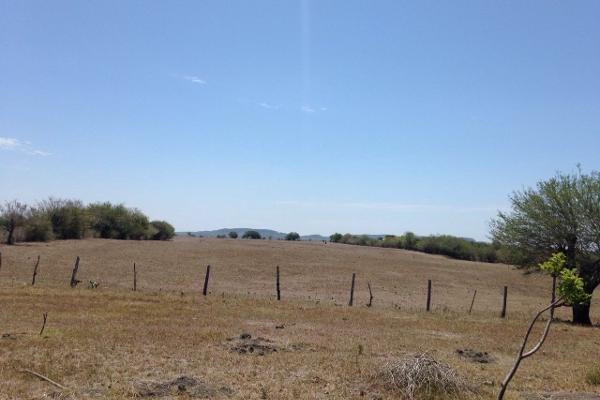 Foto de terreno habitacional en venta en finca #31989 0, esteros, altamira, tamaulipas, 2648586 No. 03