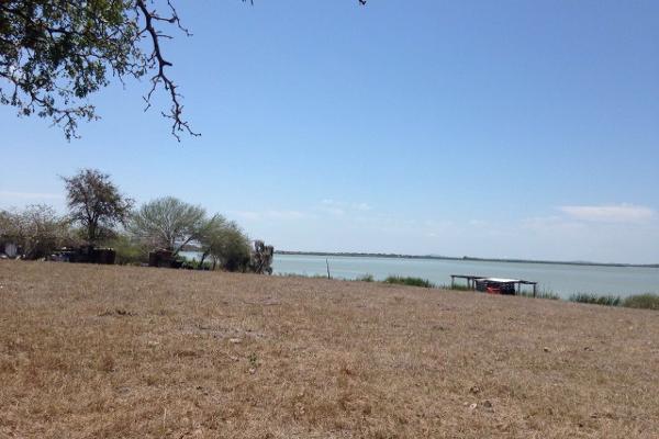 Foto de terreno habitacional en venta en finca #31989 0, esteros, altamira, tamaulipas, 2648586 No. 05