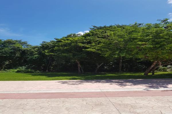 Foto de terreno habitacional en venta en flamingo , supermanzana 52, benito juárez, quintana roo, 5647228 No. 04