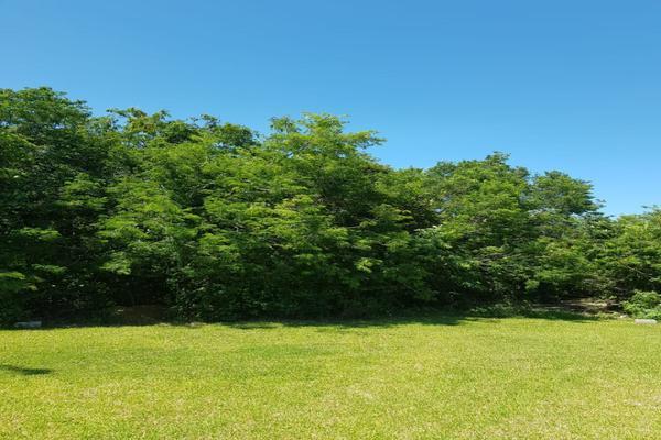 Foto de terreno habitacional en venta en flamingo , supermanzana 52, benito juárez, quintana roo, 5647228 No. 05
