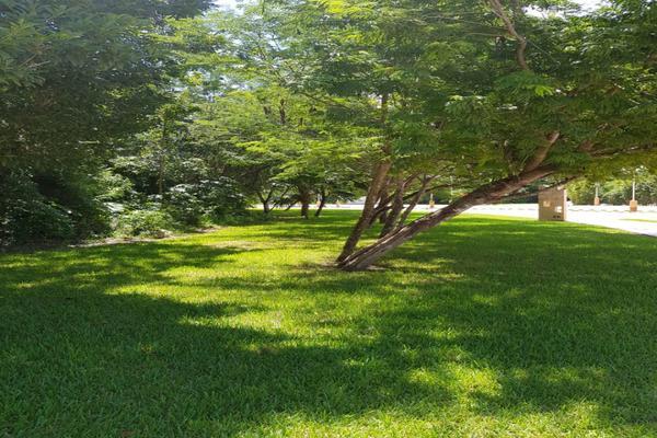Foto de terreno habitacional en venta en flamingo , supermanzana 52, benito juárez, quintana roo, 5647228 No. 06