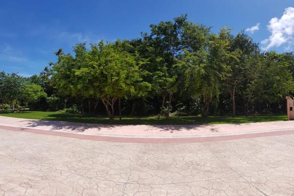 Foto de terreno habitacional en venta en flamingo , supermanzana 52, benito juárez, quintana roo, 5647228 No. 09