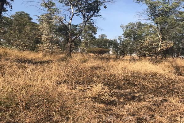 Foto de terreno industrial en venta en fraccionamiento 4 , san isidro, salamanca, guanajuato, 6248767 No. 02