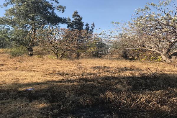 Foto de terreno industrial en venta en fraccionamiento 4 , san isidro, salamanca, guanajuato, 6248767 No. 03