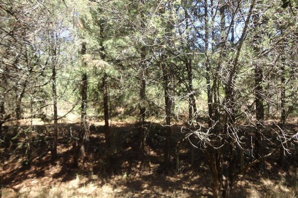 Foto de casa en venta en fraccionamiento campestre rancho san francisco , huasca de ocampo centro, huasca de ocampo, hidalgo, 3190907 No. 20
