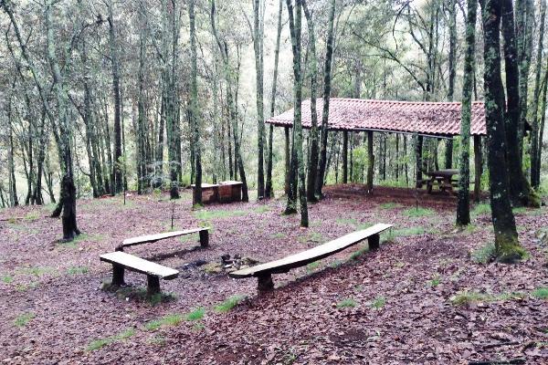 Foto de terreno habitacional en venta en fraccionamiento campestre rancho san francisco lote 55 , berm?dez, huasca de ocampo, hidalgo, 3193638 No. 05