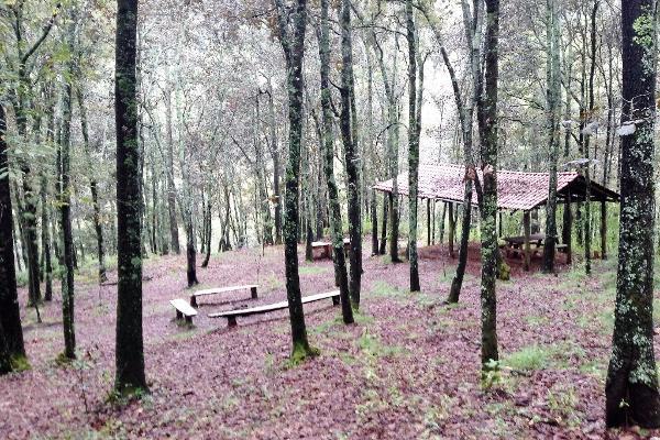 Foto de terreno habitacional en venta en fraccionamiento campestre rancho san francisco lote 55 , berm?dez, huasca de ocampo, hidalgo, 3193638 No. 06
