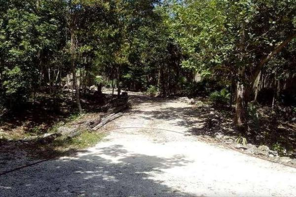 Foto de terreno habitacional en venta en fraccionamiento ixchel , ixchel, benito juárez, quintana roo, 16842026 No. 05
