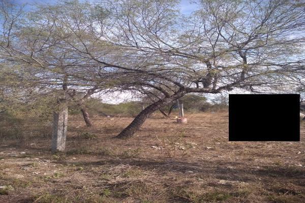 Foto de terreno habitacional en venta en fraccionamiento rincon de los sabinos lote 10 manzana 103 , cadereyta, cadereyta jiménez, nuevo león, 7194428 No. 02