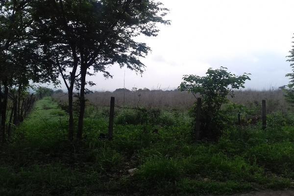 Foto de terreno comercial en venta en fraccionamiento villas del carmen, rivera el carmen , alianza, tuxtla gutiérrez, chiapas, 3415376 No. 02