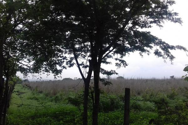 Foto de terreno comercial en venta en fraccionamiento villas del carmen, rivera el carmen , alianza, tuxtla gutiérrez, chiapas, 3415376 No. 03