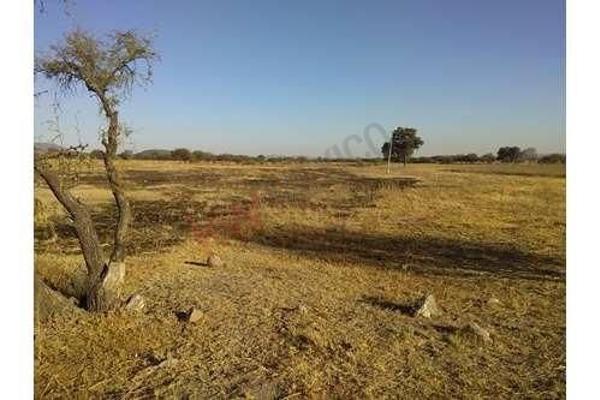 Foto de terreno habitacional en venta en fracciones 3 y 4 ejido tierra blanca , tierra blanca, el marqués, querétaro, 5941837 No. 02