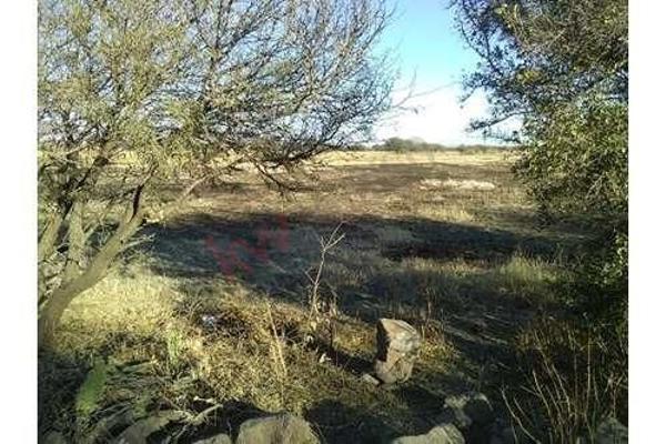 Foto de terreno habitacional en venta en fracciones 3 y 4 ejido tierra blanca , tierra blanca, el marqués, querétaro, 5941837 No. 04