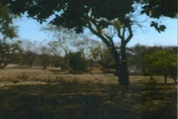 Foto de terreno habitacional en venta en framboyan s/n , ciudad ayala, ayala, morelos, 9932417 No. 02