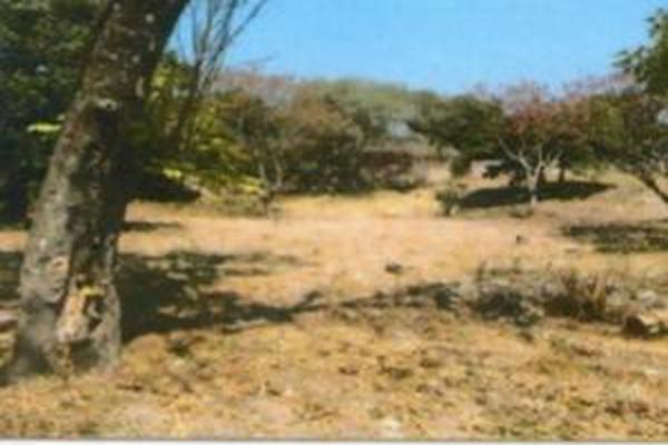 Foto de terreno habitacional en venta en framboyan s/n , ciudad ayala, ayala, morelos, 9932417 No. 03