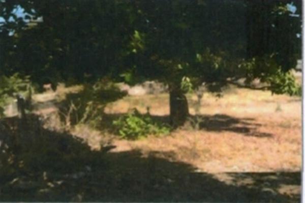 Foto de terreno habitacional en venta en framboyan s/n , ciudad ayala, ayala, morelos, 9932417 No. 04