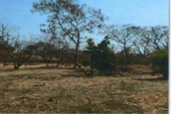 Foto de terreno habitacional en venta en framboyan s/n , ciudad ayala, ayala, morelos, 9932417 No. 05