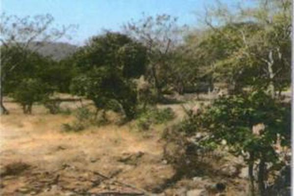 Foto de terreno habitacional en venta en framboyan s/n , ciudad ayala, ayala, morelos, 9932417 No. 09