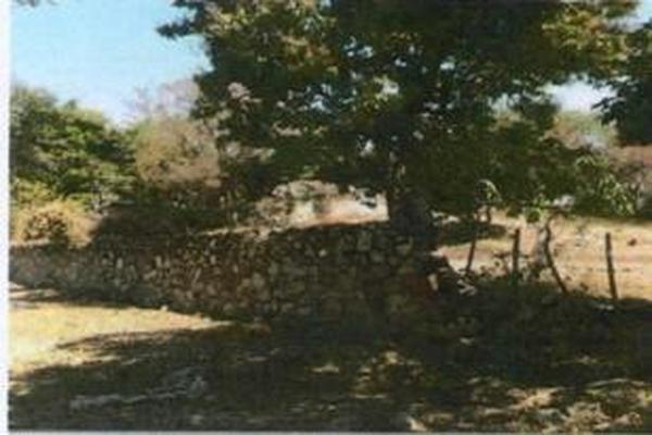 Foto de terreno habitacional en venta en framboyan s/n , ciudad ayala, ayala, morelos, 9932417 No. 10