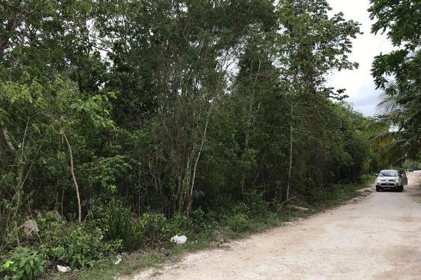 Foto de terreno habitacional en venta en francisco hu may sn , tulum centro, tulum, quintana roo, 5815887 No. 05