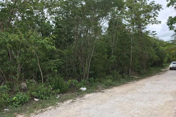 Foto de terreno habitacional en venta en francisco hu may sn , tulum centro, tulum, quintana roo, 5815887 No. 07