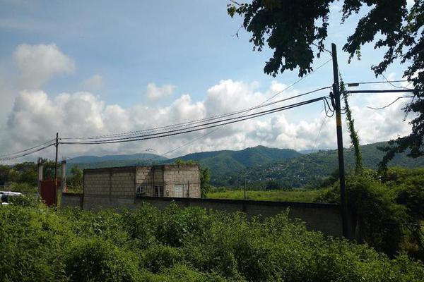 Foto de terreno habitacional en venta en  , francisco javier mina, tlaltizapán de zapata, morelos, 7962256 No. 03